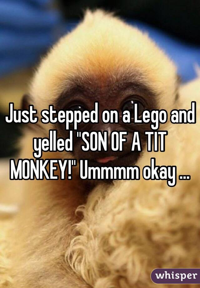 """Just stepped on a Lego and yelled """"SON OF A TIT MONKEY!"""" Ummmm okay ..."""