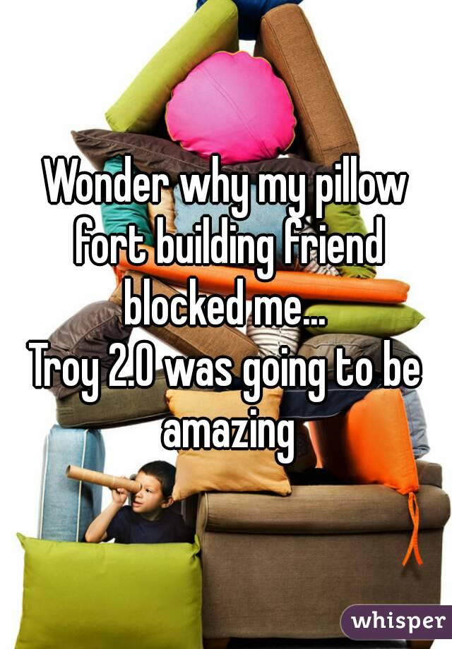 Wonder why my pillow fort building friend blocked me...  Troy 2.0 was going to be amazing