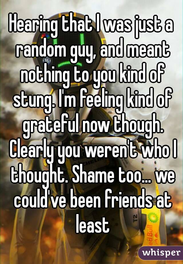 Hearing that I was just a random guy, and meant nothing to you kind of stung. I'm feeling kind of grateful now though. Clearly you weren't who I thought. Shame too... we could've been friends at least