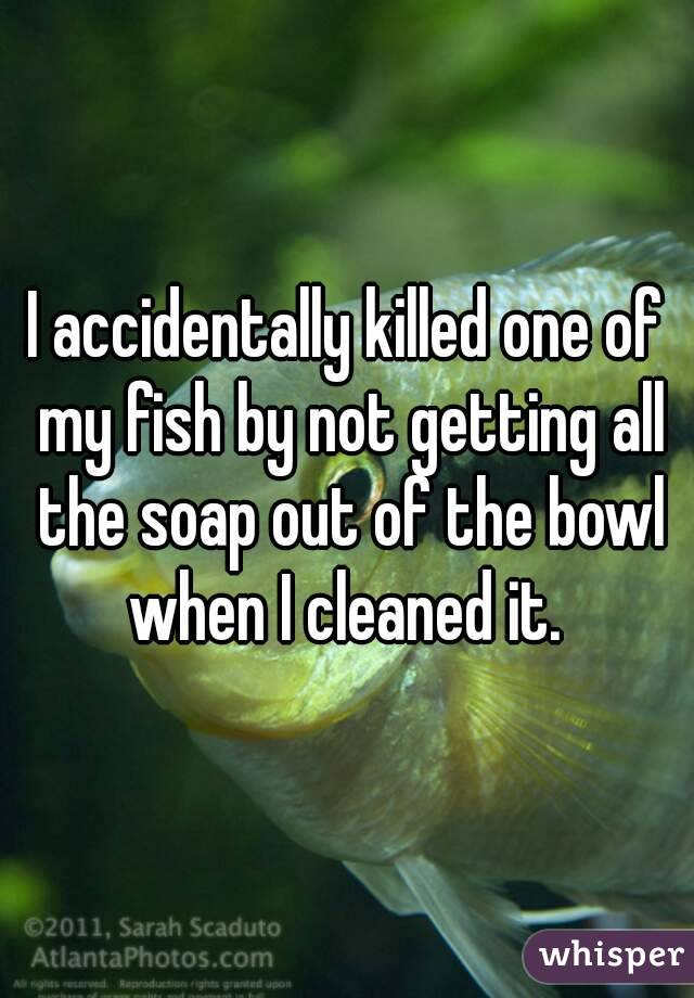 I accidentally killed one of my fish by not getting all the soap out of the bowl when I cleaned it.