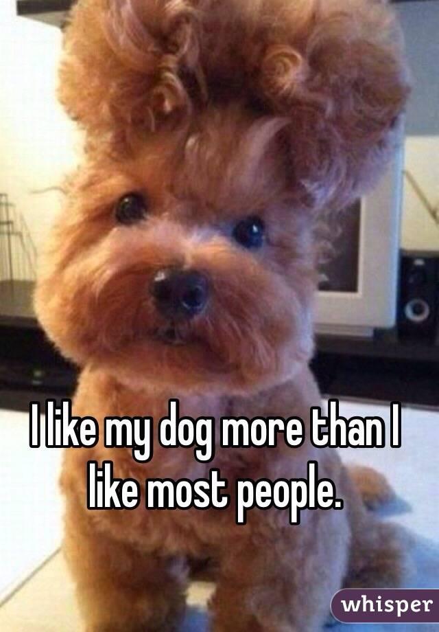 I like my dog more than I like most people.