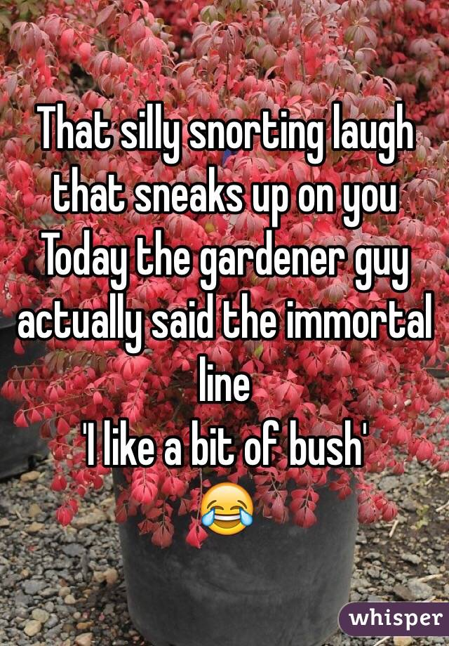 That silly snorting laugh that sneaks up on you  Today the gardener guy actually said the immortal line  'I like a bit of bush' 😂