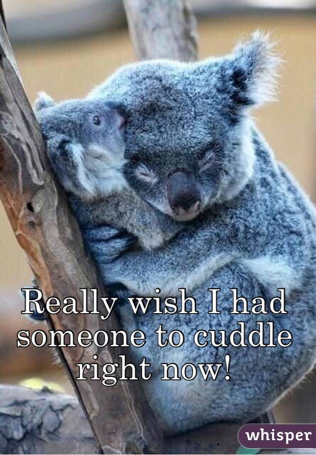 Really wish I had someone to cuddle right now!