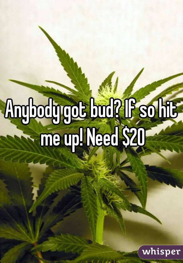 Anybody got bud? If so hit me up! Need $20