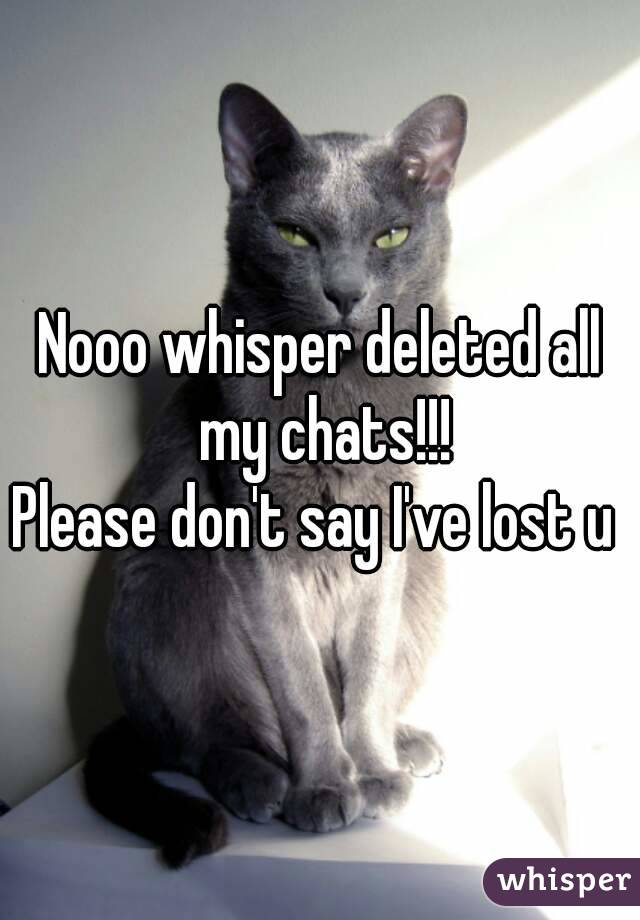 Nooo whisper deleted all my chats!!! Please don't say I've lost u