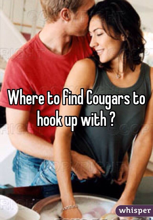 Where to find Cougars to hook up with ?