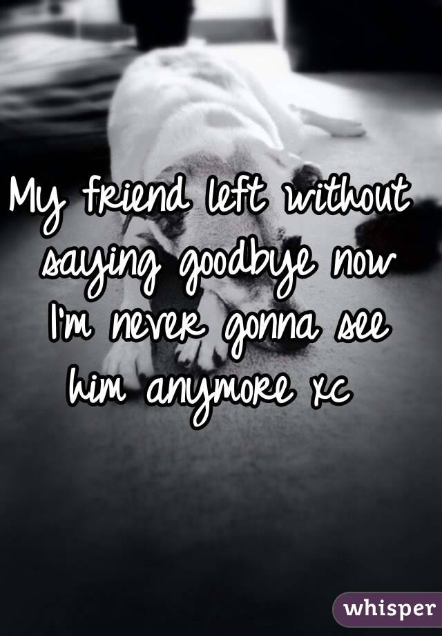 My friend left without saying goodbye now I'm never gonna see him anymore xc
