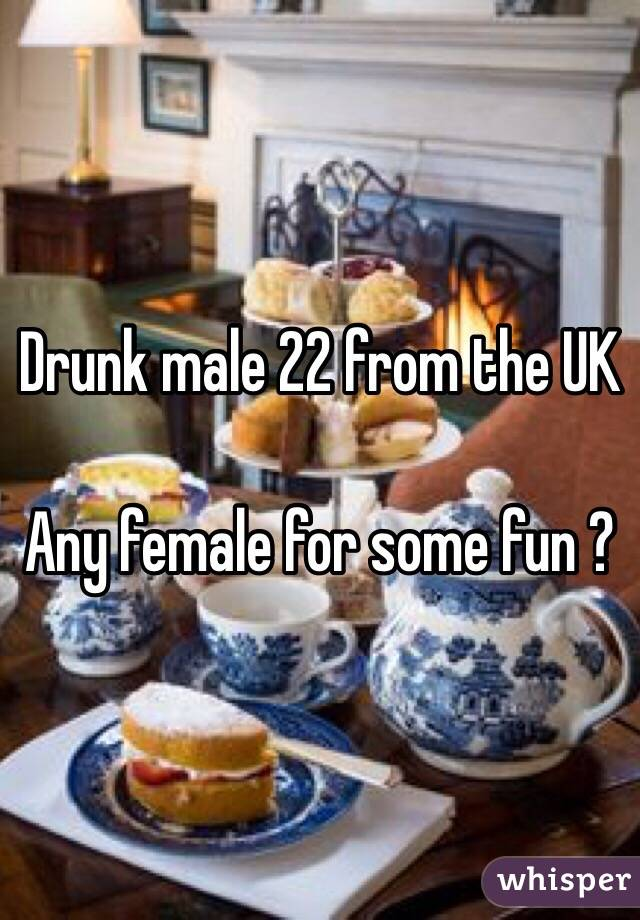 Drunk male 22 from the UK   Any female for some fun ?