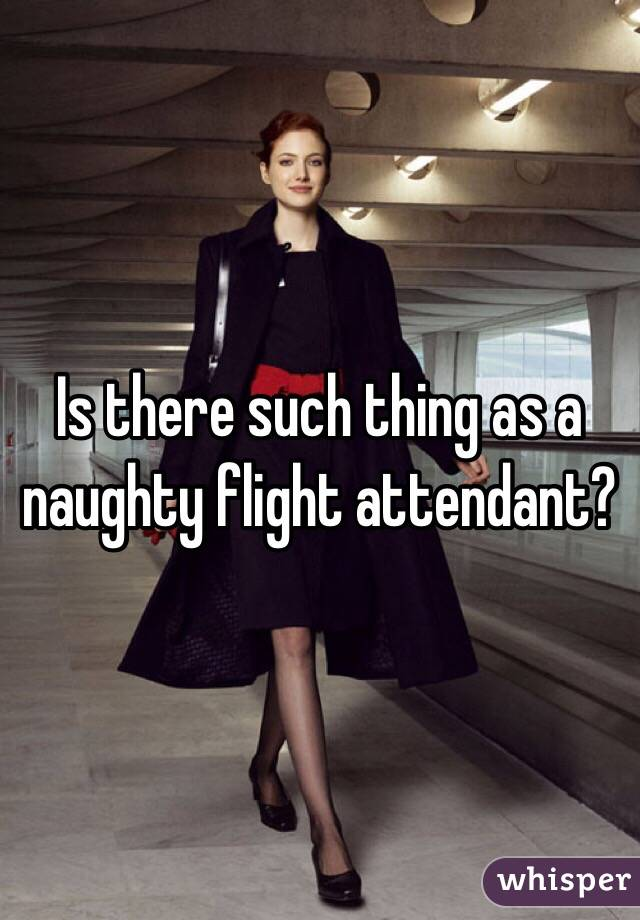 Is there such thing as a naughty flight attendant?