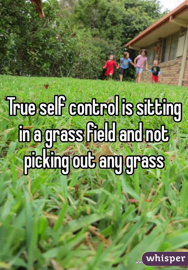 True self control is sitting in a grass field and not picking out any grass
