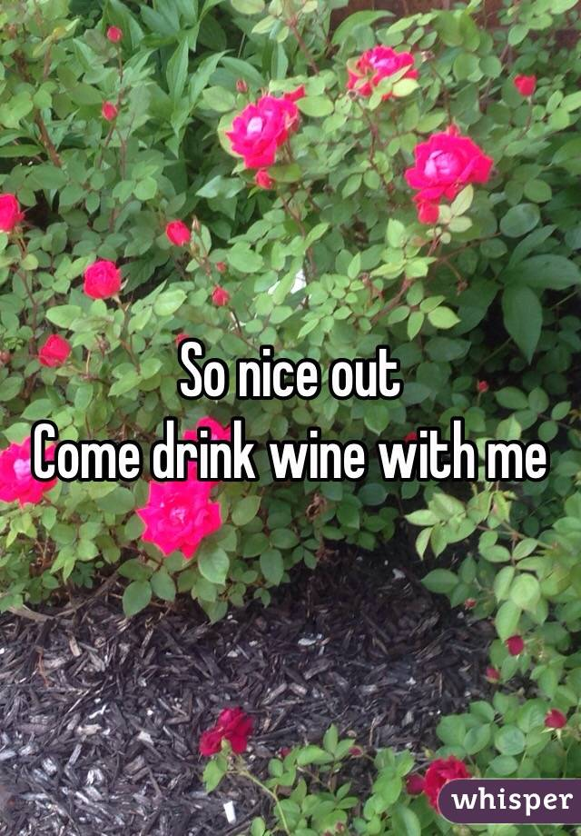 So nice out  Come drink wine with me