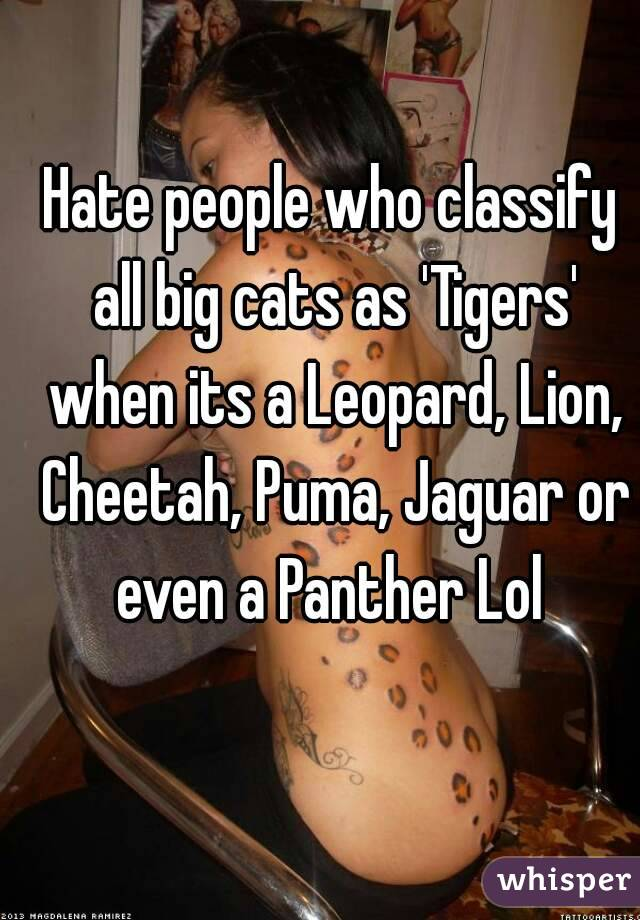 Hate people who classify all big cats as 'Tigers' when its a Leopard, Lion, Cheetah, Puma, Jaguar or even a Panther Lol