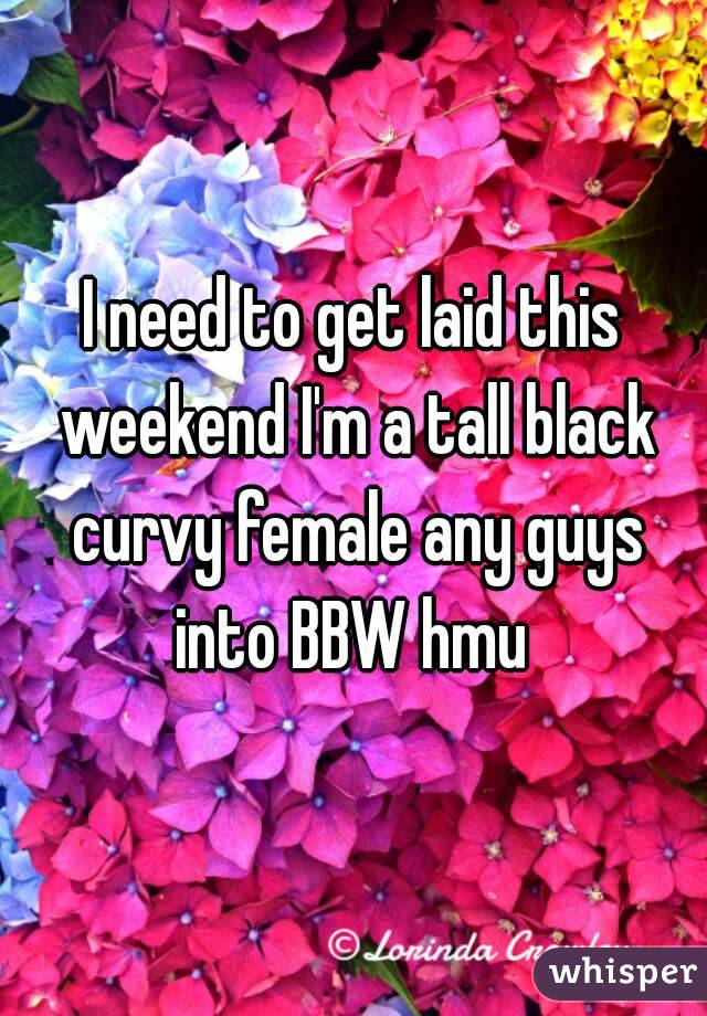 I need to get laid this weekend I'm a tall black curvy female any guys into BBW hmu