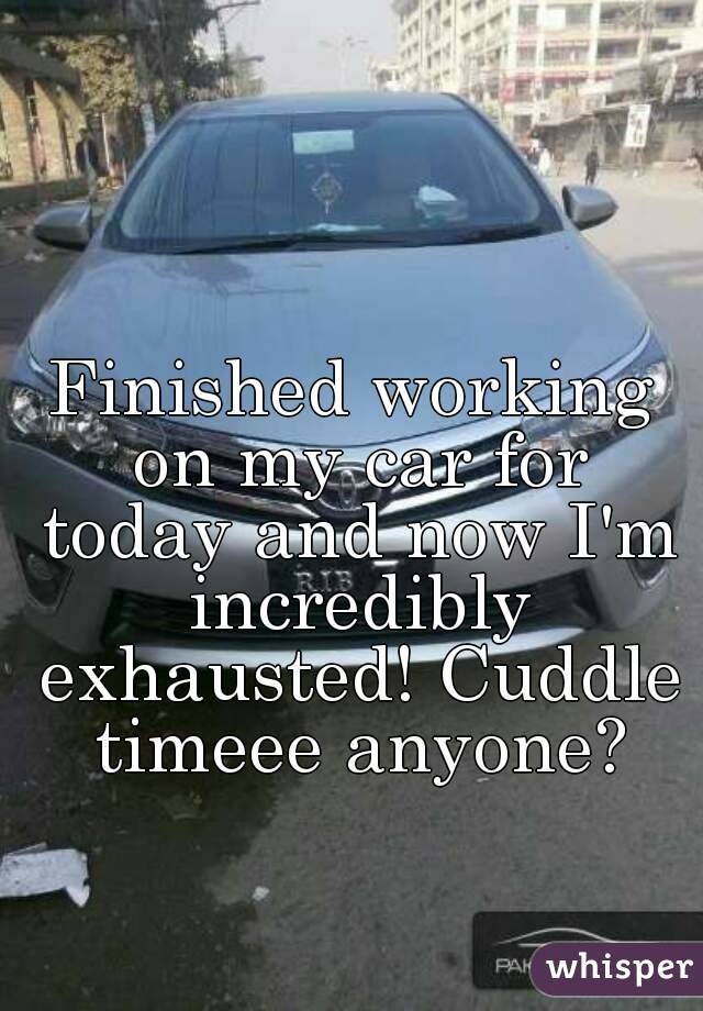 Finished working on my car for today and now I'm incredibly exhausted! Cuddle timeee anyone?