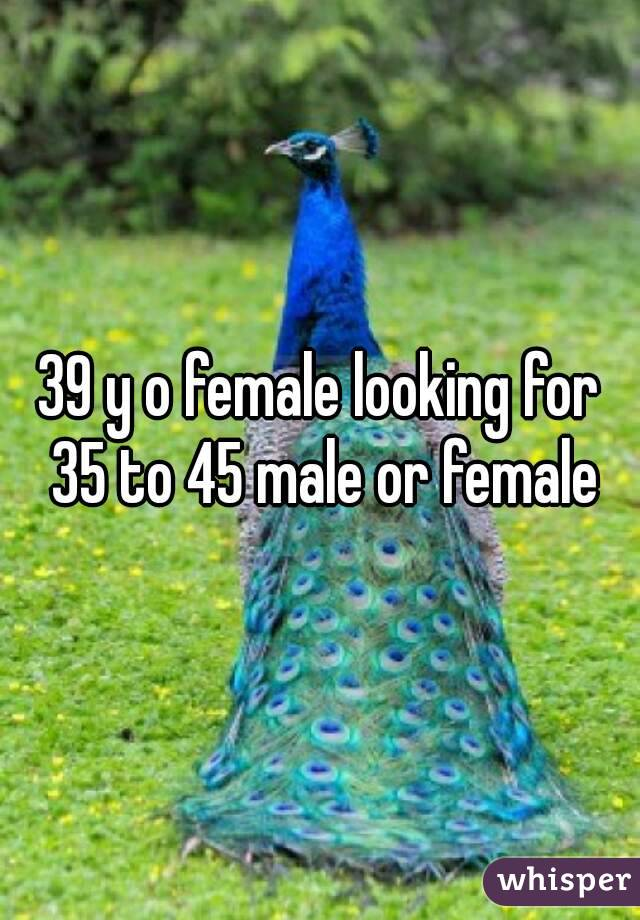 39 y o female looking for 35 to 45 male or female