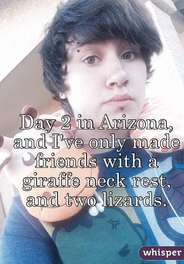 Day 2 in Arizona, and I've only made friends with a giraffe neck rest, and two lizards.