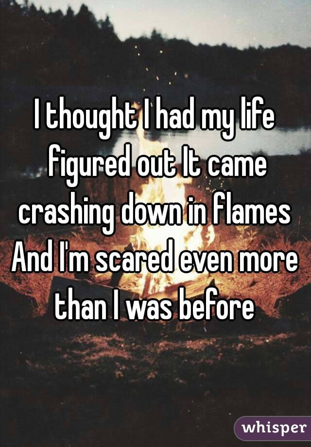 I thought I had my life figured out It came crashing down in flames  And I'm scared even more than I was before