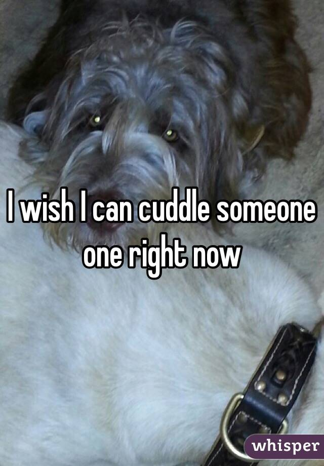 I wish I can cuddle someone one right now