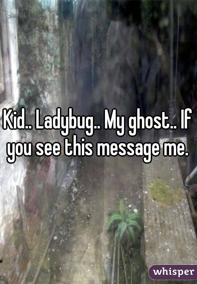 Kid.. Ladybug.. My ghost.. If you see this message me.