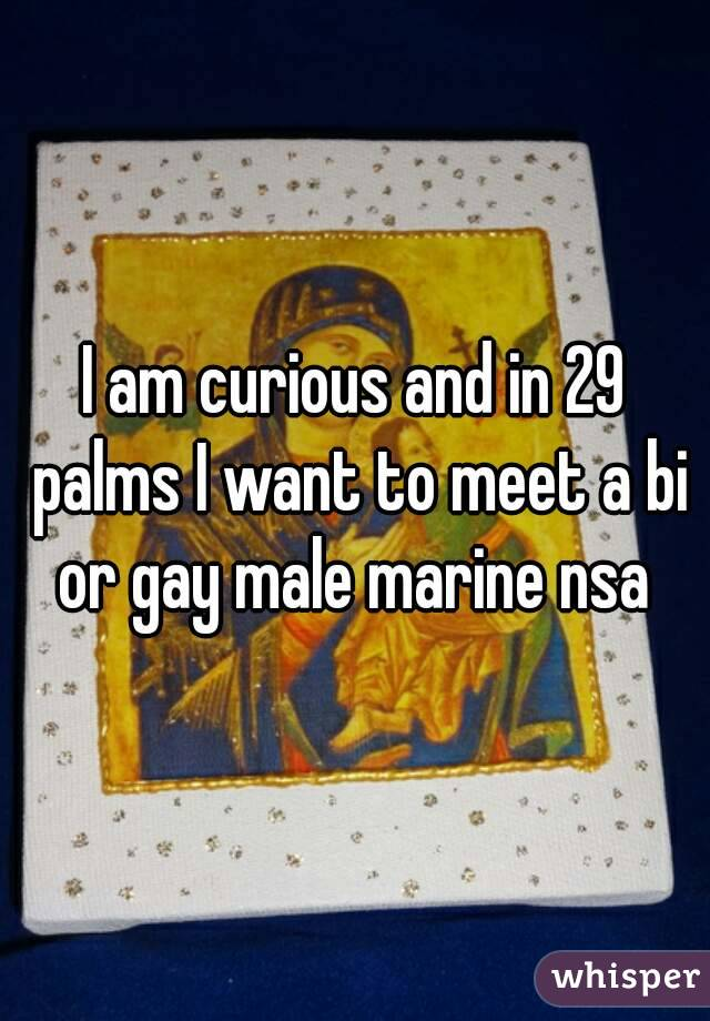 I am curious and in 29 palms I want to meet a bi or gay male marine nsa