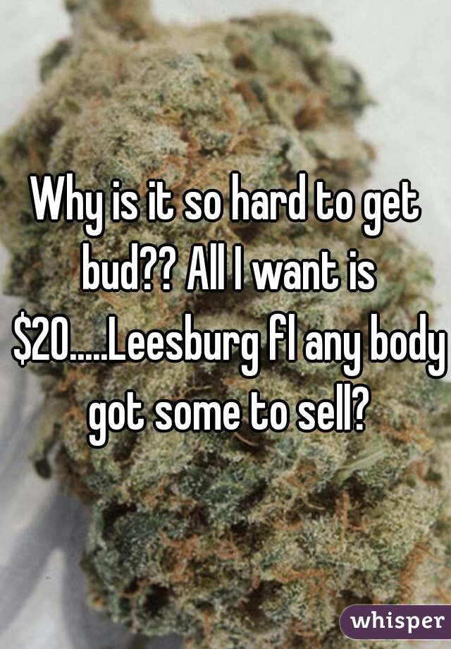 Why is it so hard to get bud?? All I want is $20.....Leesburg fl any body got some to sell?