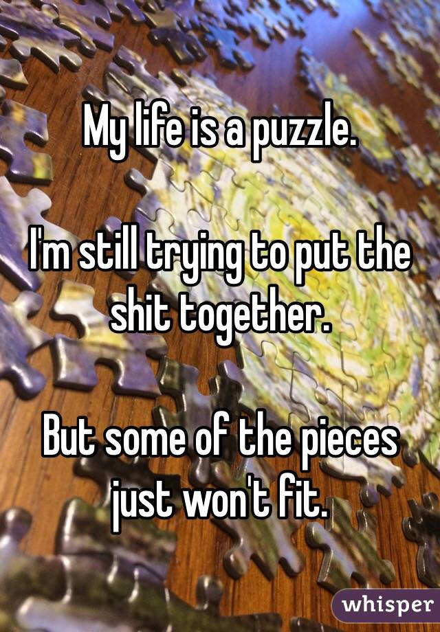 My life is a puzzle.   I'm still trying to put the shit together.   But some of the pieces just won't fit.