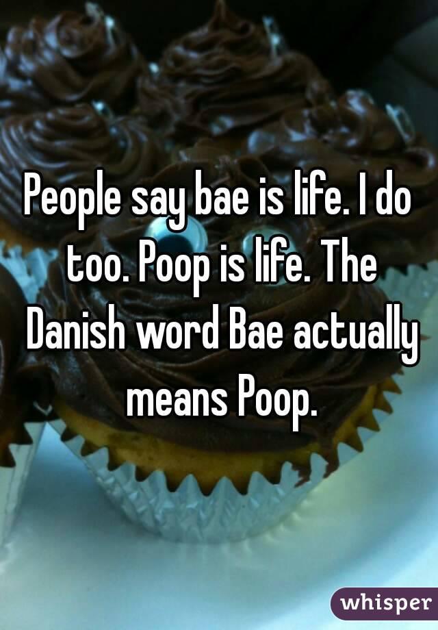 People say bae is life. I do too. Poop is life. The Danish word Bae actually means Poop.