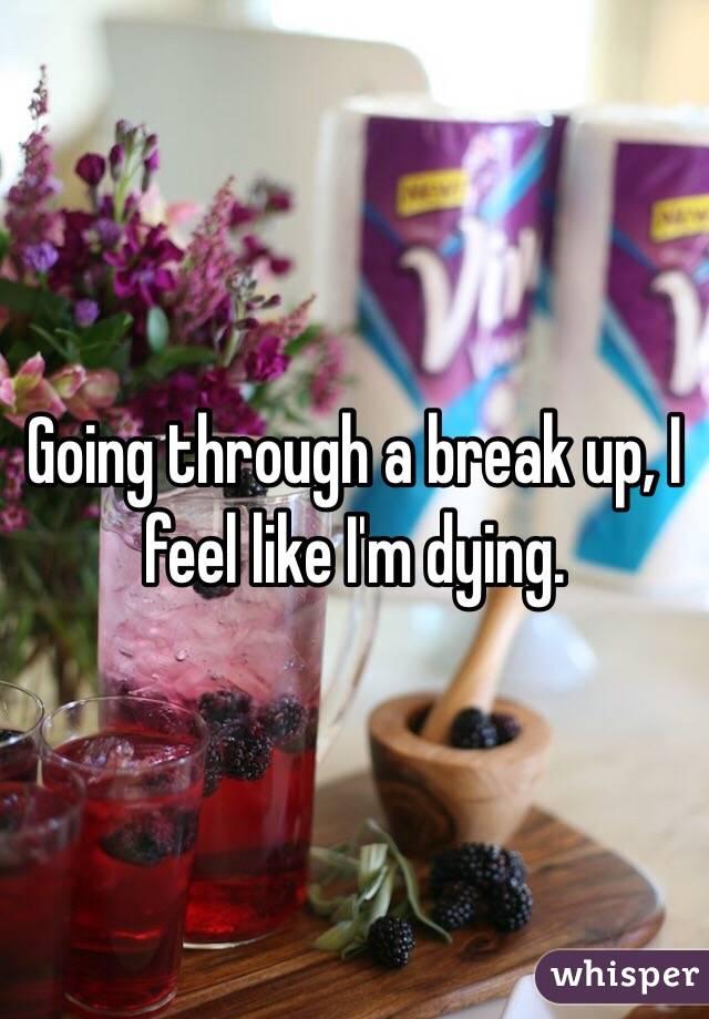 Going through a break up, I feel like I'm dying.