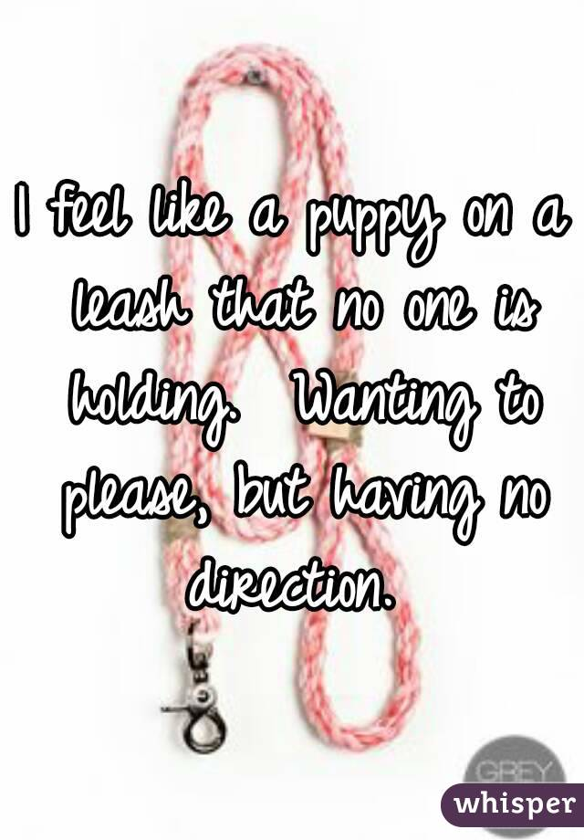 I feel like a puppy on a leash that no one is holding.  Wanting to please, but having no direction.
