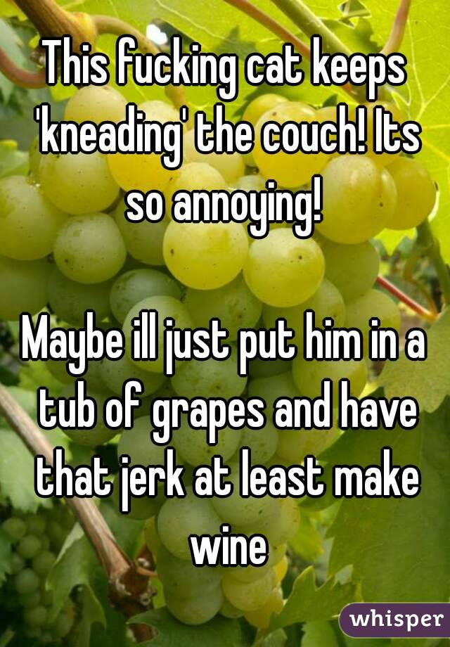 This fucking cat keeps 'kneading' the couch! Its so annoying!   Maybe ill just put him in a tub of grapes and have that jerk at least make wine