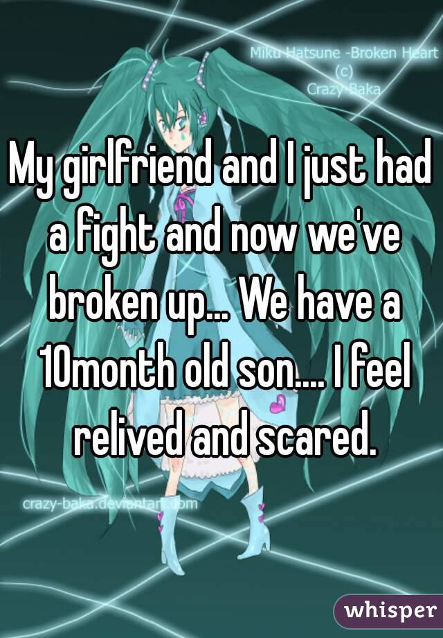 My girlfriend and I just had a fight and now we've broken up... We have a 10month old son.... I feel relived and scared.