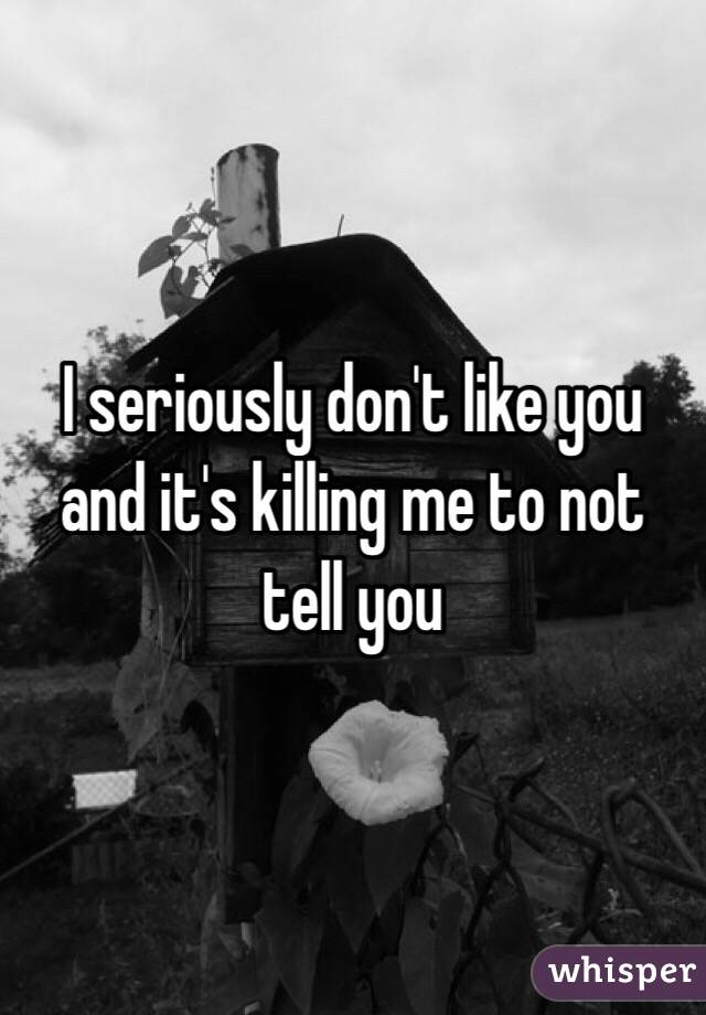 I seriously don't like you and it's killing me to not tell you