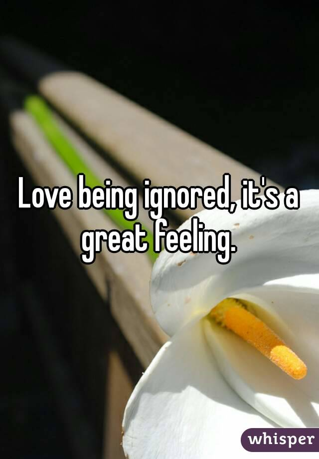 Love being ignored, it's a great feeling.