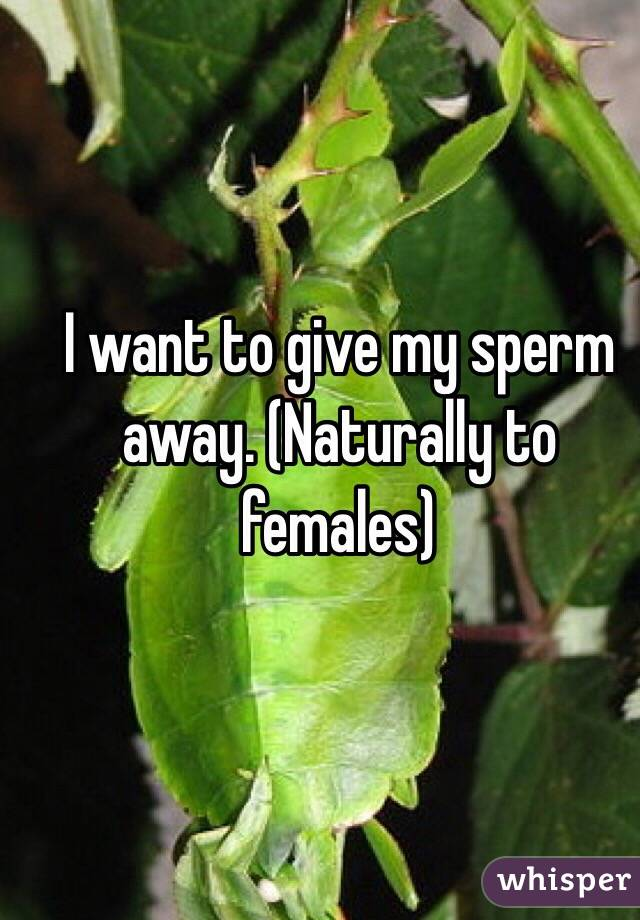 I want to give my sperm away. (Naturally to females)