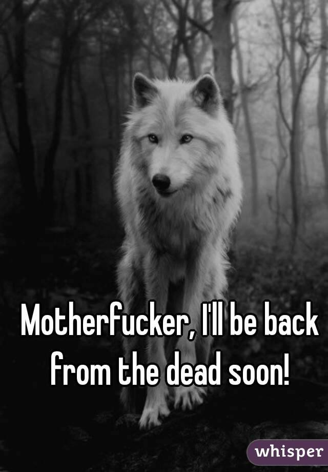 Motherfucker, I'll be back from the dead soon!