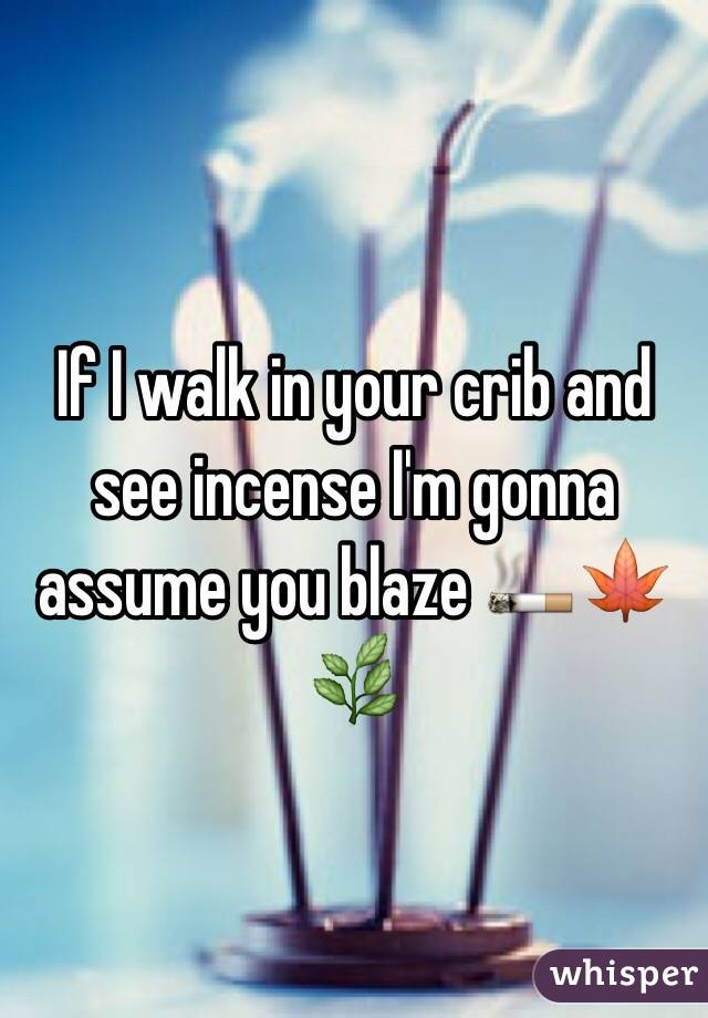 If I walk in your crib and see incense I'm gonna assume you blaze 🚬🍁🌿