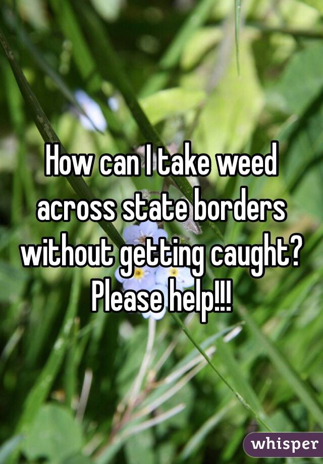 How can I take weed across state borders without getting caught? Please help!!!