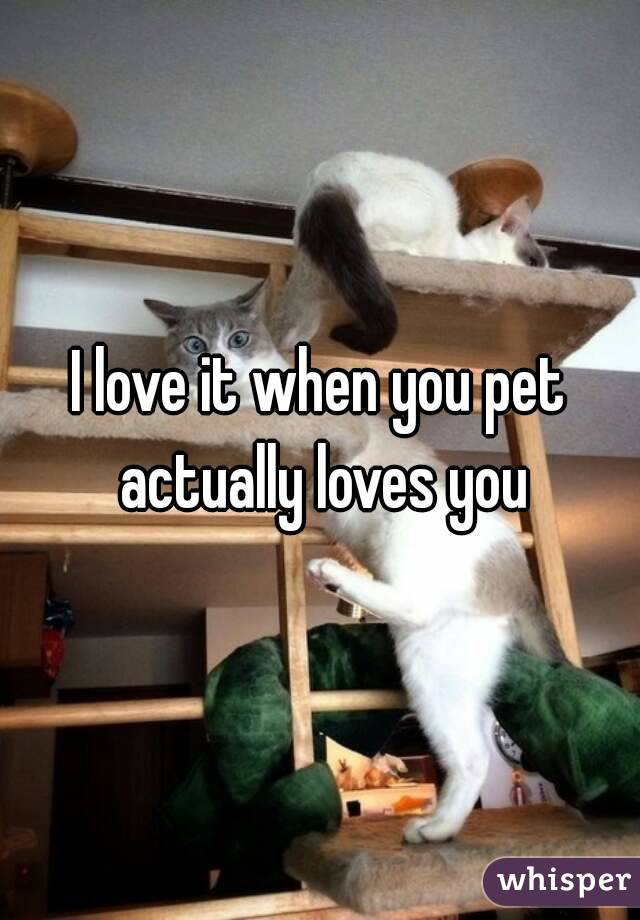 I love it when you pet actually loves you