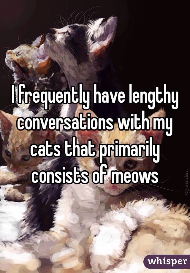 I frequently have lengthy conversations with my cats that primarily consists of meows