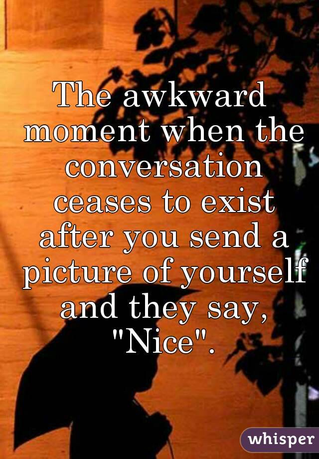"""The awkward moment when the conversation ceases to exist after you send a picture of yourself and they say, """"Nice""""."""