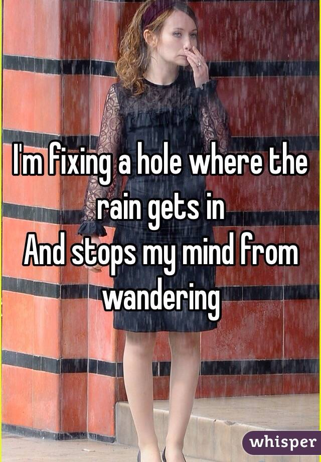 I'm fixing a hole where the rain gets in And stops my mind from wandering
