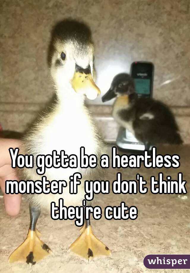 You gotta be a heartless monster if you don't think they're cute