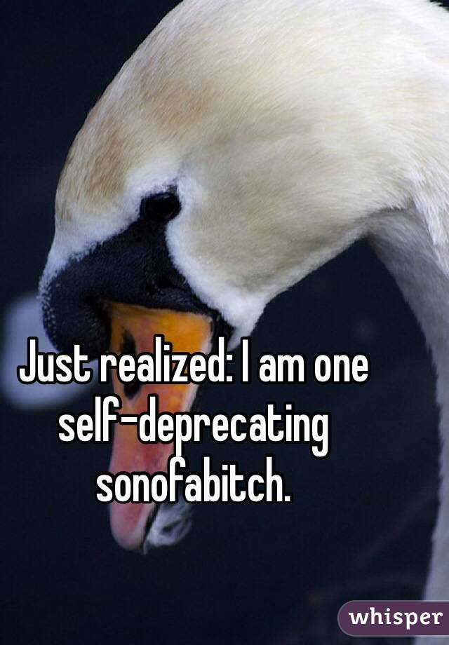 Just realized: I am one self-deprecating sonofabitch.