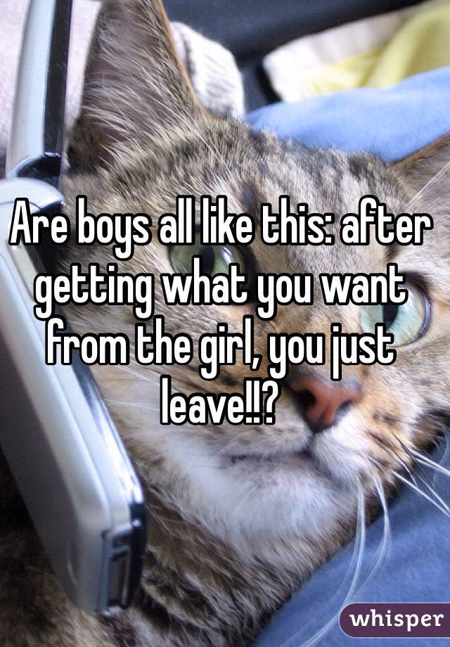 Are boys all like this: after getting what you want from the girl, you just leave!!?