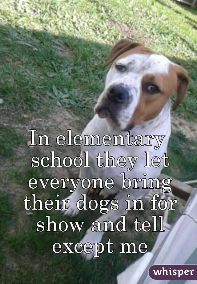 In elementary school they let everyone bring their dogs in for show and tell except me