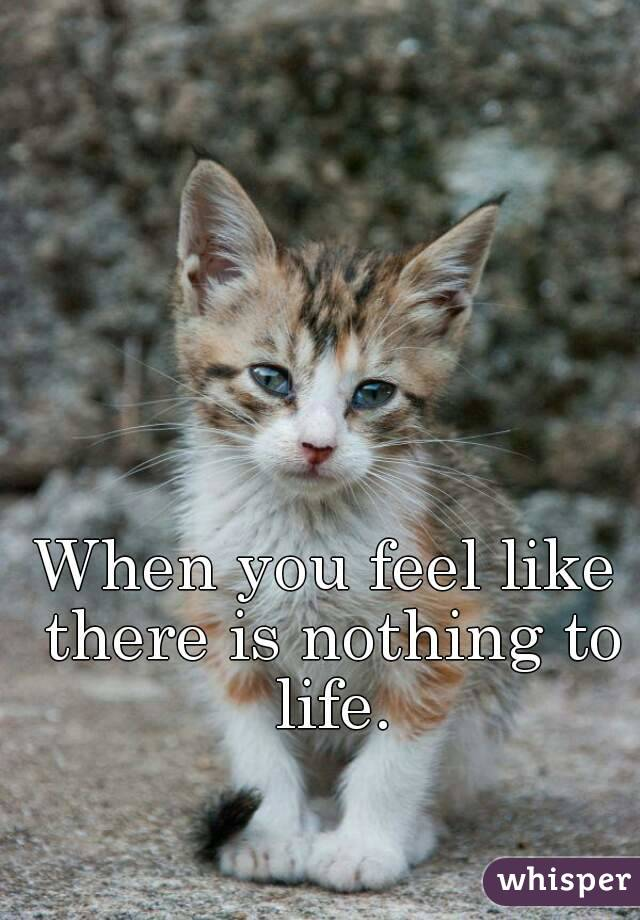 When you feel like there is nothing to life.