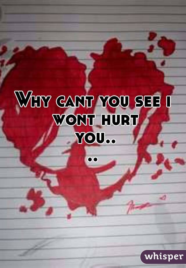 Why cant you see i wont hurt you....