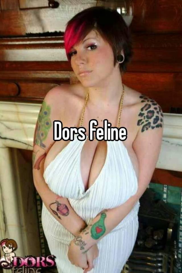 Feline dors AltBooBblog: Retired