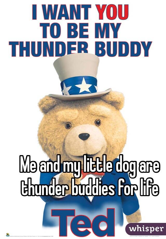 Me and my little dog are thunder buddies for life