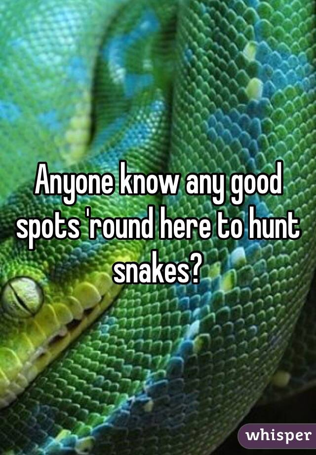 Anyone know any good spots 'round here to hunt snakes?